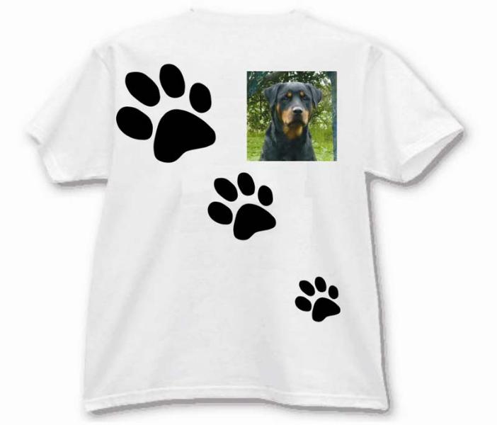 t-shirt-per-tassello-e
